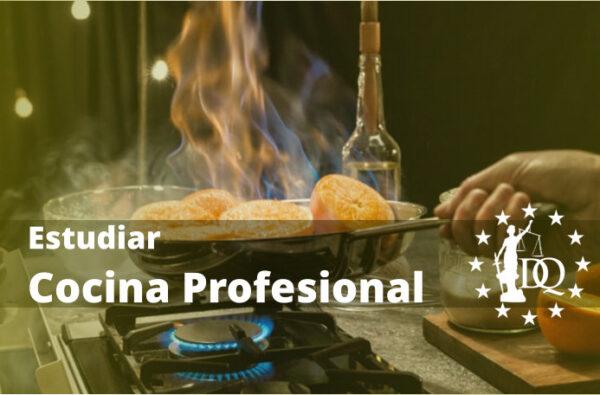 Estudiar Cocina Online para ser Chef