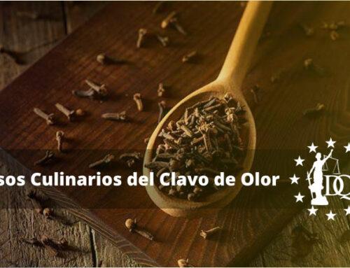 ¿Qué es el Clavo de Olor?, Usos Culinarios del Clavo de Olor | Kitchen