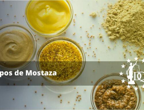 Tipos de Mostaza y su Uso | Estudiar Cocina Online